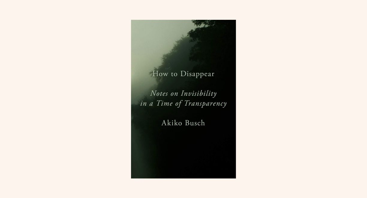 How to Disappear: Notes on Invisibility in a Time of Transparency cover